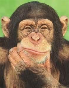 Profile picture for user Sr.Viladomat